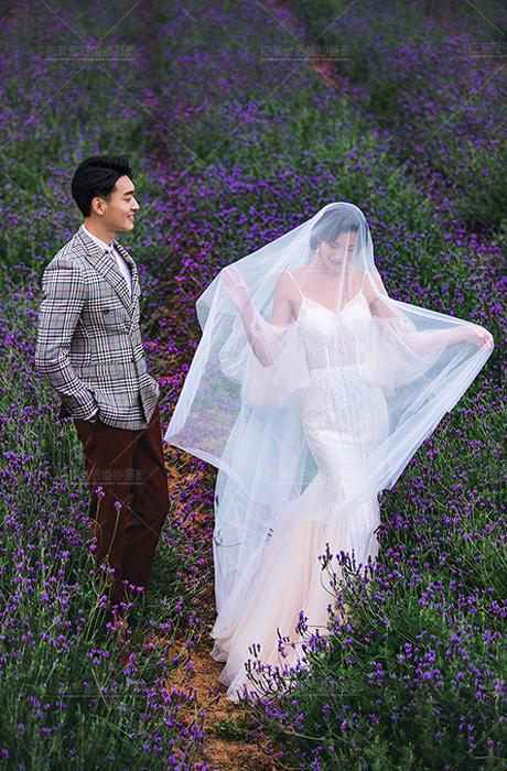 【拉菲皇后婚纱摄影】告白花园